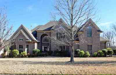 Lakeland Single Family Home For Sale: 4510 Ravenwood Oak