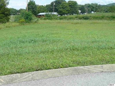 Bean Station Residential Lots & Land For Sale: Lot 3 Landon Way