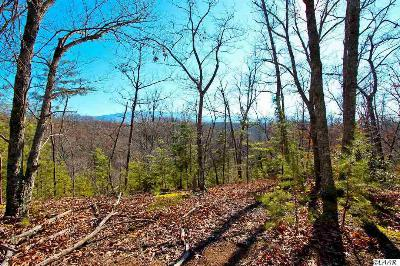 Sevierville Residential Lots & Land For Sale: 4401 Wilhite Rd