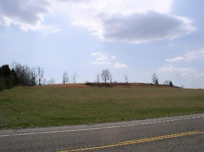 White Pine Residential Lots & Land For Sale: Roy Messer Hwy