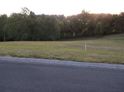 Jefferson City Residential Lots & Land For Sale: Lot 20 Castlebury Drive