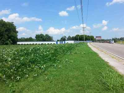 Jefferson City Residential Lots & Land For Sale: Lot 3 Hwy 92 N