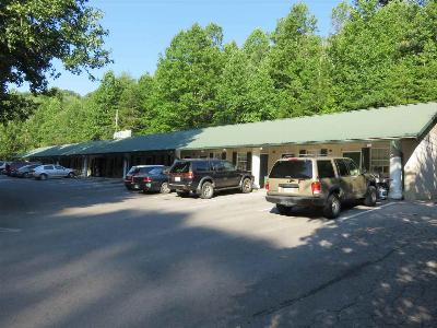Pigeon Forge Multi Family Home For Sale: 2020 Ridge Road