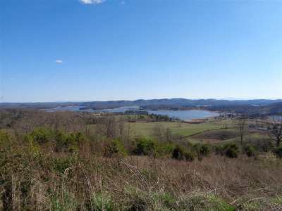 Grainger County Residential Lots & Land For Sale: Lot 91 Huckleberry Hollow