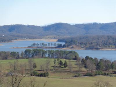 Grainger County Residential Lots & Land For Sale: Lot 106 Huckleberry Hollow