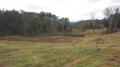 Talbott Residential Lots & Land For Sale: 138 N White Pine Rd