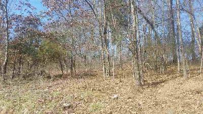 Residential Lots & Land For Sale: 1920 E Chelaque