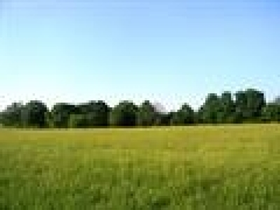 Dandridge Residential Lots & Land For Sale: Lot 91 Duck Pond Drive