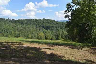 Claiborne County, Cocke County, Grainger County, Greene County, Hamblen County, Hancock County, Hawkins County, Jefferson County Residential Lots & Land For Sale: Tract 4 Raven Hill Rd
