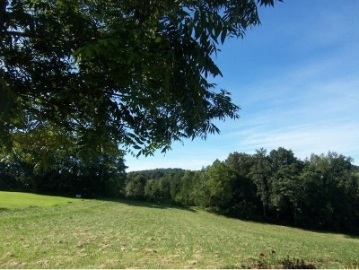 Hamblen County Residential Lots & Land For Sale: 4215 Witt Acres Circle