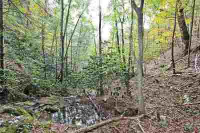 Cocke County, Greene County, Grainger County, Hamblen County, Jefferson County, Hancock County, Union County, Claiborne County Residential Lots & Land For Sale: 73.5 Acres Dogwood Stand Rd Off