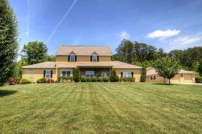 White Pine Single Family Home For Sale: 146 Sunnydale Ln.