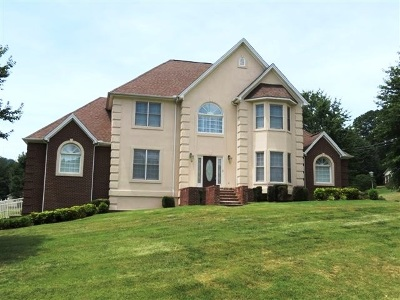 Hamblen County Single Family Home For Sale: 1575 Wiley Blount Dr.