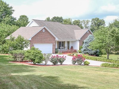 Bean Station, Blaine, Mooresburg, Rutledge, Thorn Hill, Washburn Single Family Home For Sale: 294 Baye Rd