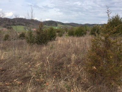 Claiborne County, Cocke County, Grainger County, Greene County, Hamblen County, Hancock County, Hawkins County, Jefferson County Residential Lots & Land For Sale: 2243 Old Parrottsville Hwy