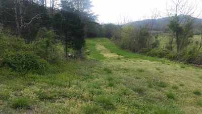 Residential Lots & Land For Sale: 9233 Asheville Hwy.