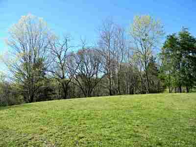 Dandridge Residential Lots & Land For Sale: 1873 Bouldercrest Drive