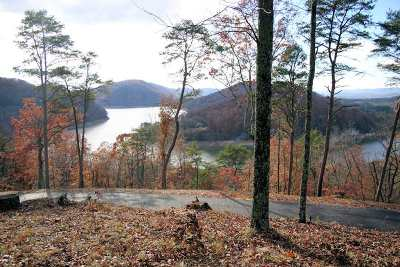 Whitesburg Residential Lots & Land For Sale: Lot 3 Hickory Knoll