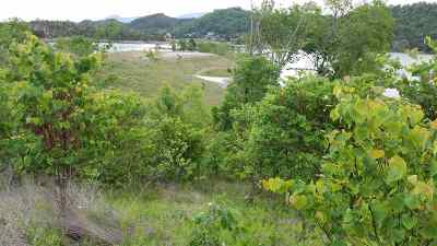 Jefferson County Residential Lots & Land For Sale: Lot 25 Belle Isle Dr