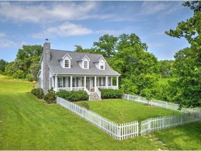 Single Family Home For Sale: 520 Garrett Hill Road