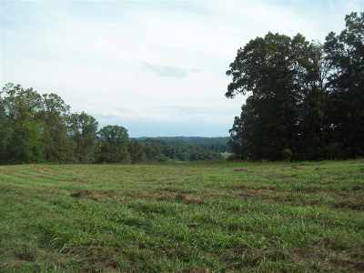 Turners Landing Residential Lots & Land For Sale: 6536 Smoky Mountain Ct