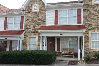 Sevierville Condo/Townhouse For Sale: 523 Orchard Valley Way
