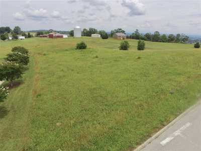 Hamblen County Residential Lots & Land For Sale: 4088 Eagles Nest Drive