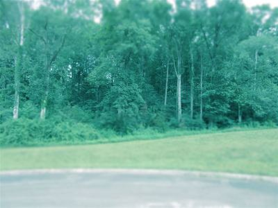 Russellville Residential Lots & Land For Sale: 6305 Turners Pond Trail