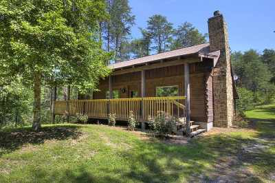 Sevierville Single Family Home For Sale: 985 Gnatty Branch Road