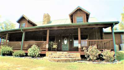 Dandridge Single Family Home For Sale: 1041 Long Spur Trail