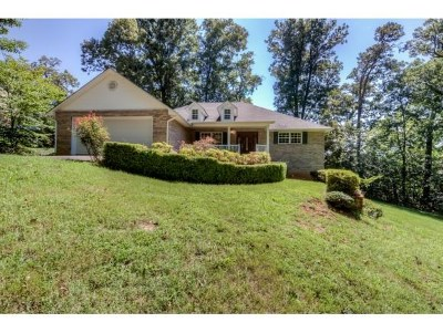 Single Family Home For Sale: 288 Noellwood Drive