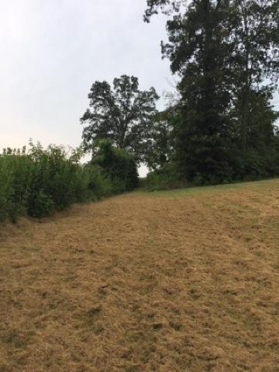 Grainger County Residential Lots & Land For Sale: Lot 80 Shiloh Springs Road