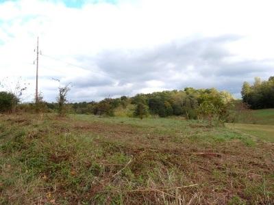 Dandridge Residential Lots & Land For Sale: Lot 11 Zirkle Rd