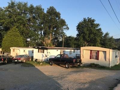 Grainger County Multi Family Home For Sale: 184 Little Boy Circle