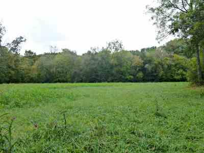 Dandridge Residential Lots & Land For Sale: Tract III Dalton Road #III
