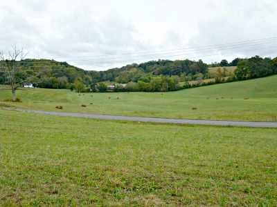 Dandridge Residential Lots & Land For Sale: Tract IV Dalton Road
