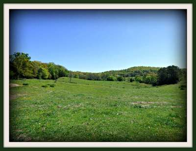 White Pine Residential Lots & Land For Sale: Parcel 2 Parsonage Road