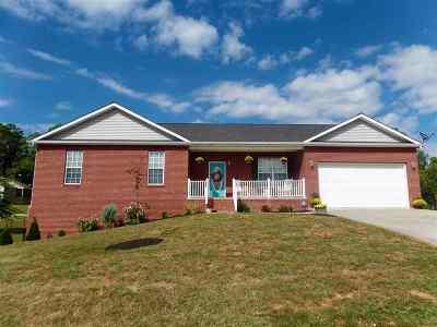 Dandridge Single Family Home For Sale: 1806 Pheasant Crossing Dr.