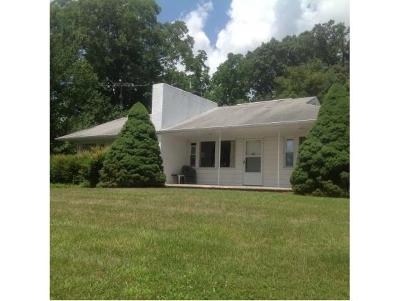 Single Family Home For Sale: 5055 E Andrew Johnson Highway