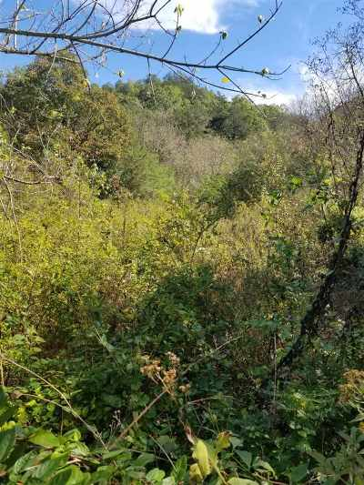 Grainger County Residential Lots & Land For Sale: Miller Landing