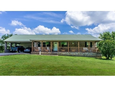 Single Family Home For Sale: 707 Valleydale Road