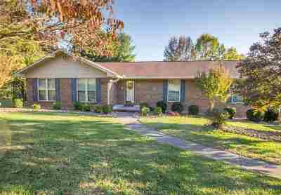 Hamblen County Single Family Home For Sale: 527 Windridge Lane