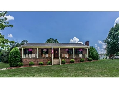 Single Family Home For Sale: 517 Harlan Street