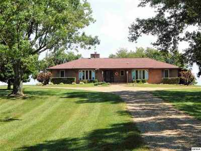 Hamblen County Single Family Home For Sale: 808 Rouse Rd