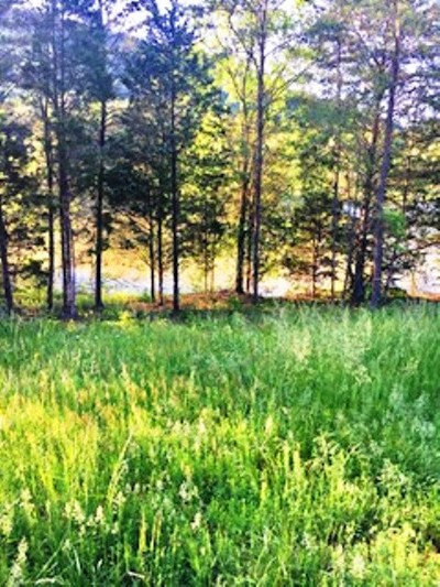 Morristown Residential Lots & Land Temporary Active: 3017 Lee Ridge Road