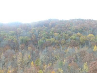 Grainger County Residential Lots & Land For Sale: 30 Acres Steve Brown Road