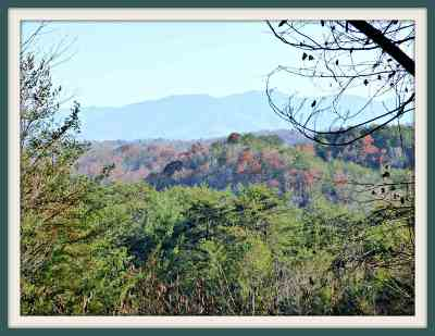 Pigeon Forge Residential Lots & Land For Sale: Lot 36 Wild Briar Trail