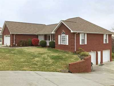 Dandridge Single Family Home For Sale: 144 Skyline Drive