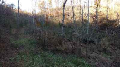 Residential Lots & Land For Sale: 37 Acres Brandon Hollow Ln