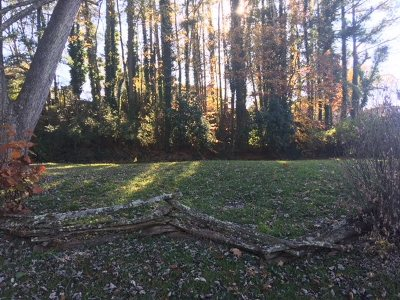 Morristown Residential Lots & Land For Sale: 458 Laurel Street